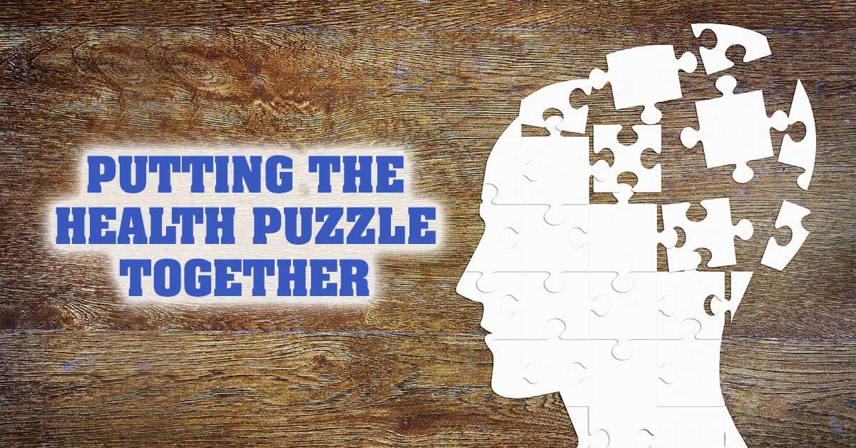 Hormone Puzzle